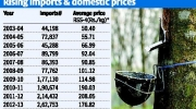 Why rubber prices have plunged